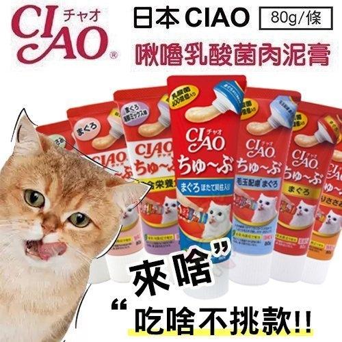 *WANG*【單條】日本CIAO 啾嚕乳酸菌肉泥膏 80g/條 管狀好餵食 隨機出貨