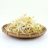 (✿◠‿◠)促銷品~任選六樣$399免運活動區專用★【日燦】有機黃豆芽