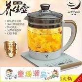 養生壺 110V220V伏出國美國加拿大臺灣小家電煎煮中藥電磁爐煮茶壺 童趣