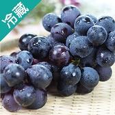 【台灣】優質巨峰葡萄1盒(450g±5%/盒)【愛買冷藏】