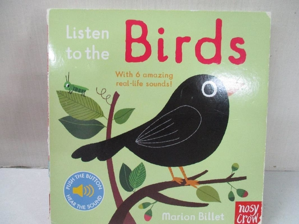 【書寶二手書T1/少年童書_BQS】Listen to the Birds_Marion Billet