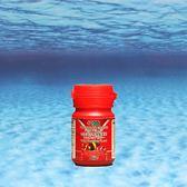 AZOO 9合1海水魚飆豔漢堡 120ml