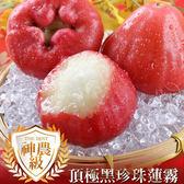 【愛上新鮮】頂級神農黑珍珠蓮霧3台斤組(13~16顆裝)