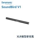 黑熊數位 Saramonic 楓笛 SoundBird V1 槍型麥克風 心型指向 XLR 直播 採訪 收音