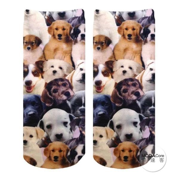 【摩達客】美國進口Living Royal 犬犬狗狗群 短襪腳踝襪彈性襪動物圖案襪 (YLR60117014)