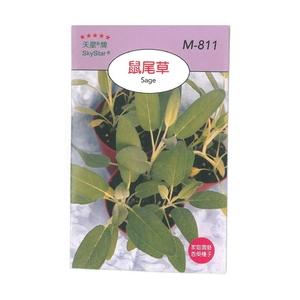 花田綠地種子-鼠尾草