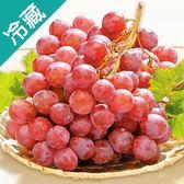 【美國】鮮甜紅地球葡萄(500G±5%)/盒【愛買冷藏】