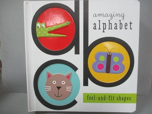 【書寶二手書T3/少年童書_JAB】Amazing Alphabet: Feel-and-fit Shapes_Simp