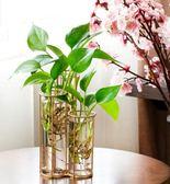 尾牙年貨節創意小清新大花瓶擺件客廳桌面綠蘿插花歐式花器玻璃水培植物容器第七公社