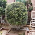 防鳥網 果樹專用防鳥網罩櫻桃網家庭防鳥用的網果園尼龍網防護罩葡萄蔬菜 8號店