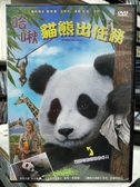 挖寶二手片-B03-304-正版DVD-動畫【哈啾:貓熊出任務】-(直購價)