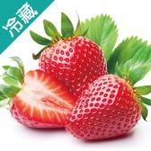 日本福岡草莓禮盒2入/盒(500G+-10%)【愛買冷藏】