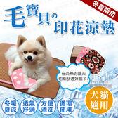 XL號 涼墊 兩用印花涼墊窩墊 寵物涼墊 窩墊 散熱 降溫 散熱 寵物窩 貓狗窩 貓狗毯 狗窩 貓窩 涼感