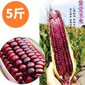 高含量花青素!友善農法安心紫愛玉米5斤