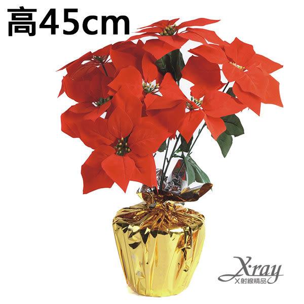 節慶王【X032480】七頭聖誕盆花,聖誕紅/聖誕佈置/擺飾/造景/花材/人造花/假花