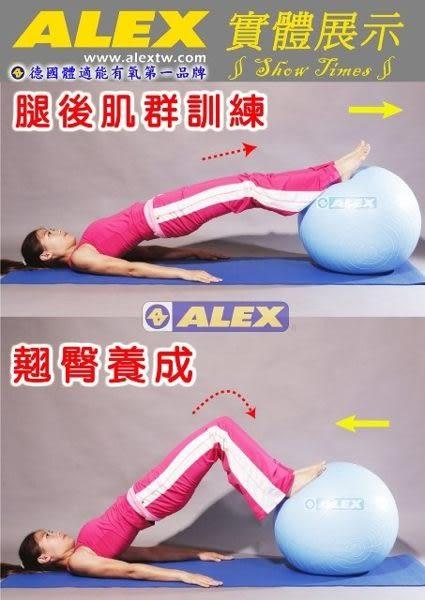 【ALEX】韻律球(65CM) B-2902