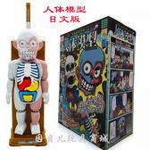 人體模型 仿真骷髏拼裝日本益智恐怖惡搞整蠱偶桌面玩具 非凡小鋪
