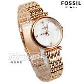 FOSSIL  晶鑽魅力氣質時尚女錶 珍珠螺貝面 防水手錶 玫瑰金電鍍 ES4429【時間玩家】
