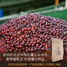 現烘【咖啡綠商號】坦尚尼亞吉利馬札羅火山水洗處理咖啡豆-珍珠圓豆批次(半磅)