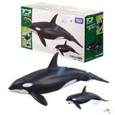 店慶優惠兩天-虎鯨玩具多美卡安利亞仿真野生動物836438迷你男孩兒童手掌模型