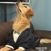 狗狗西裝禮服大型犬金毛哈士奇秋裝薩摩耶衣服薄款夏季大狗狗西服 【韓語空間】