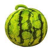 毛絨玩具仿真綠西瓜抱枕公仔 球形西瓜兒童水果道具 創意禮物女生WY限時7折起,最後一天