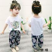 寶寶女寶短袖潮衣服
