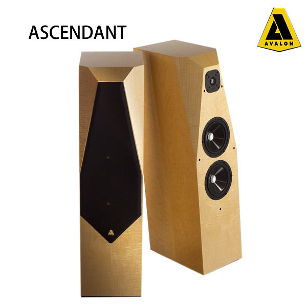 【竹北勝豐群音響】AVALON   ASCENDANT  (標準色)Cherry,Maple,Walnut