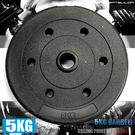 單片5KG水泥槓片.5公斤槓片.啞鈴.舉...