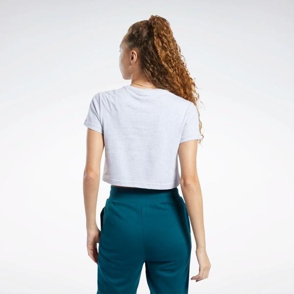 REEBOK CLASSICS VECTOR CROP TOP 女裝 短袖 短版 純棉 穿搭 舒適 灰【運動世界】FK2756