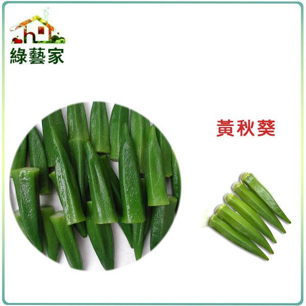 【綠藝家】大包裝G10.黃秋葵種子55克