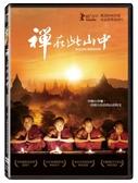 【停看聽音響唱片】【DVD】禪在此山中