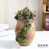 多肉花盆老樁創意大口徑粗陶透氣陶瓷植物盆【毒家貨源】