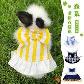 寵物兔子衣服飾品龍貓豚鼠夏季裙子帶牽引繩小寵服裝【小獅子】