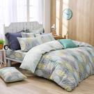 鴻宇 雙人鋪棉兩用被套 瓦妮莎 美國棉授權品牌 台灣製2157