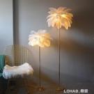 網紅羽毛落地燈婚慶路引燈鴕鳥毛北歐ins客廳茶幾置物架立式燈 樂活生活館