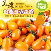 〔輸碼Yahoo88享88元折扣〕【愛上新鮮】美濃鮮採橙蜜香小蕃茄 6斤(禮盒裝/3斤裝)