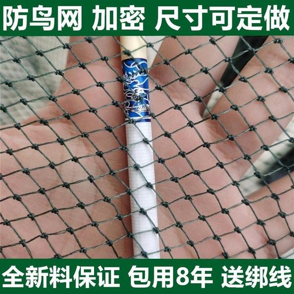 防鳥網家用陽臺魚塘果園防鳥果樹多肉瓜果種植農用防鳥護罩尼龍網 快速出貨