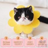 【毛氈款】貓咪伊麗莎白太陽花項圈頭套防舔恥辱圈【極簡生活】
