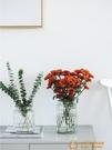 花瓶擺件客廳插花玻璃透明北歐鮮花花器水養簡約【小獅子】