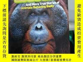 二手書博民逛書店APE罕見ESCAPES And more true stories of animals behaving ba