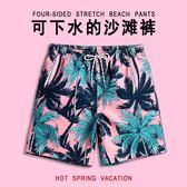 短褲 男士寬鬆速干平角溫泉泳褲五分大尺碼情侶海邊度假短褲女套裝