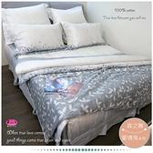 『御芙專櫃』森之舞【兩用被+薄床包】3.5*6.2尺/ 三件式精梳棉/MIT