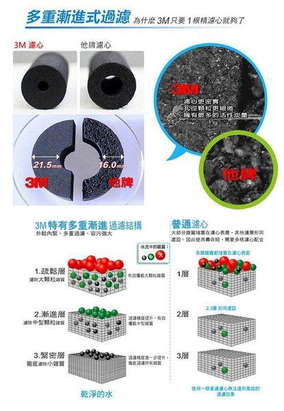【天耀淨水】3M AP117SL(一年份3個組合價 ) 10吋顆粒活性碳濾心 美國NSF認證【適用通規10吋濾殼】