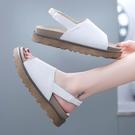 涼鞋.日系極簡素面寬帶後鬆緊露趾厚底涼鞋.白鳥麗子