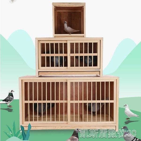 鴿具信鴿巢箱配對籠賽鴿巢鴿子配對籠巢箱實木鴿子籠鳥籠打籠YYJ 凱斯盾