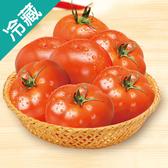 產銷履歷鮮採牛蕃茄1盒(600g±5%/盒)【愛買冷藏】