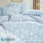 60支天絲床包兩用被四件式 加大6x6.2尺 蘭黛 100%頂級天絲 萊賽爾 附正天絲吊牌 BEST寢飾