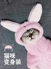 火爆貓咪衣服搞笑搞怪變身裝小貓幼貓寵物保暖加厚秋冬季網紅同款  poly girl