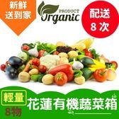 平均每蔬菜箱$585!產地直送,新鮮到家![輕量]花蓮有機蔬菜箱(配送8次)(免運宅配)